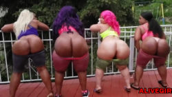 Hot ebony BBWs with twerking huge asses